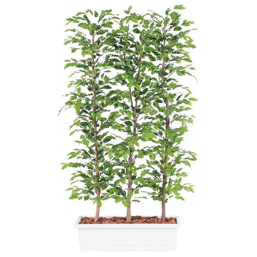 スーパーSALEセール対象 人工観葉植物 ベンジャミナ スプラッシュ パーテション 200 (器:ガーデンペット) 96368 フェイクグリーン イミテーション インテリア オフィス 観葉植物 大型 観葉植物 おしゃれ 観葉植物 インテリア 《2018ds》