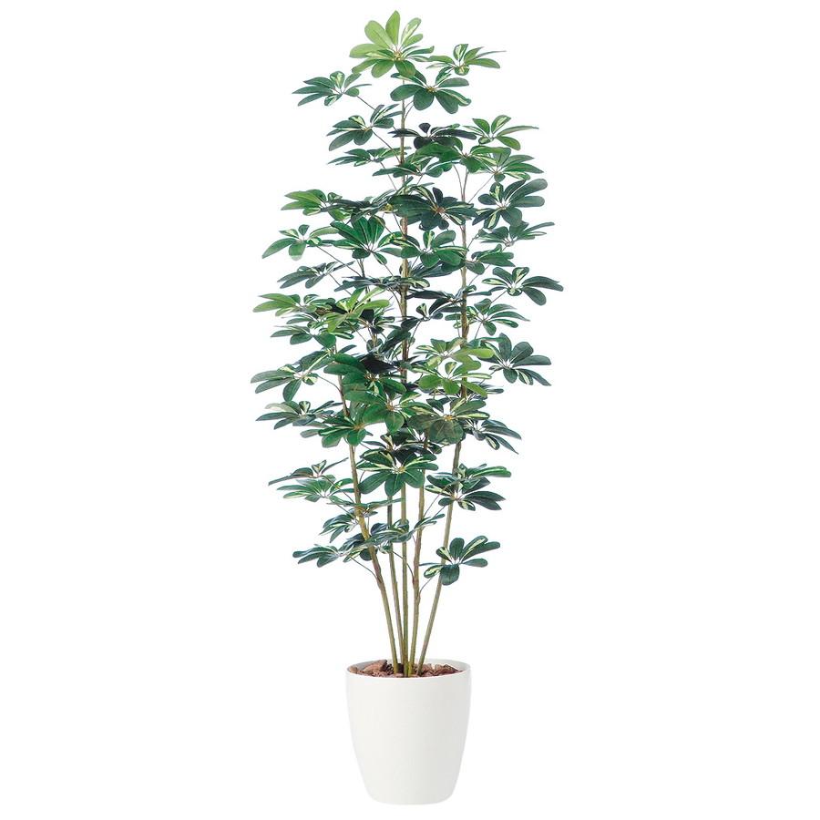 スーパーSALE10%OFF対象 人工観葉植物 シェフレラ 180 (器:RP-300) 98889|フェイクグリーン イミテーション インテリア オフィス 店舗 造花 観葉植物 大型 観葉植物 おしゃれ 観葉植物 インテリア 《2018ds》