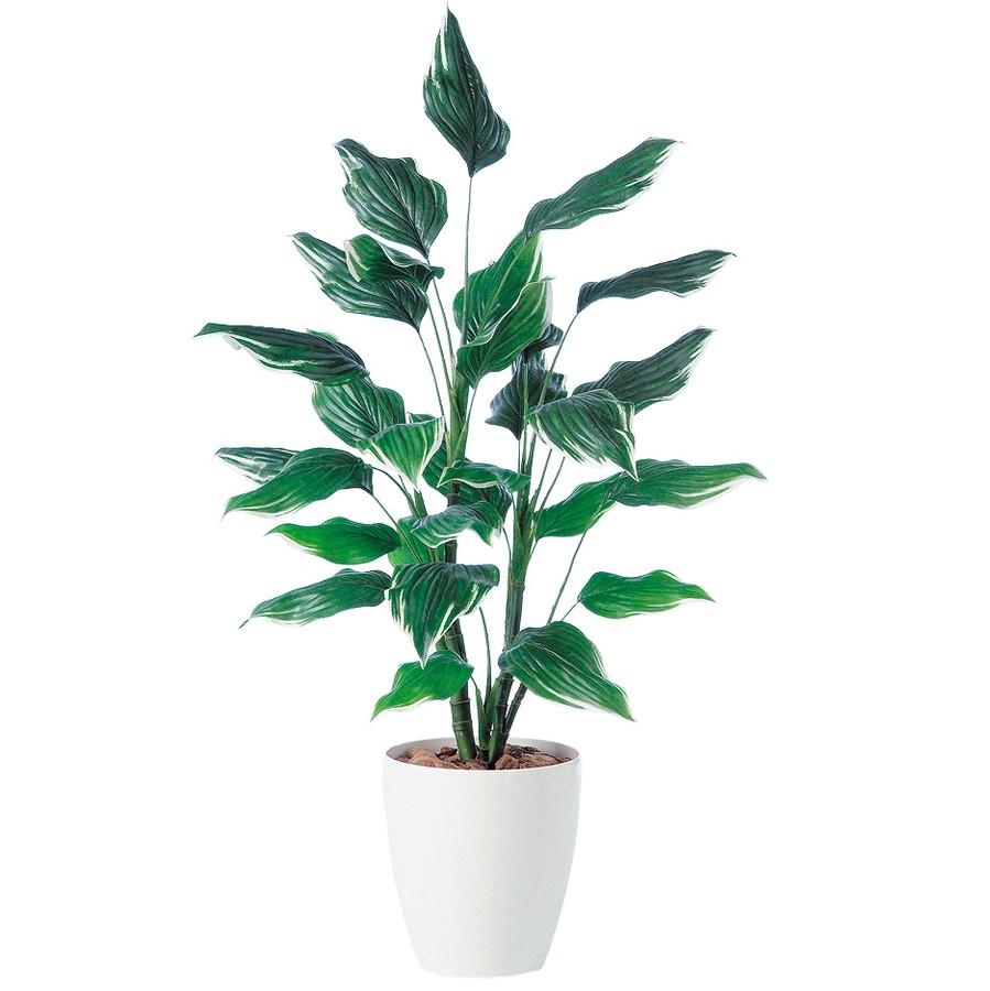 スーパーSALE10%OFF対象 人工観葉植物 ホスタ R 120 (器:RP-265) 91337|フェイクグリーン イミテーション インテリア オフィス 店舗 造花 おしゃれ 観葉植物 大型 観葉植物 おしゃれ 観葉植物 インテリア 《2018ds》
