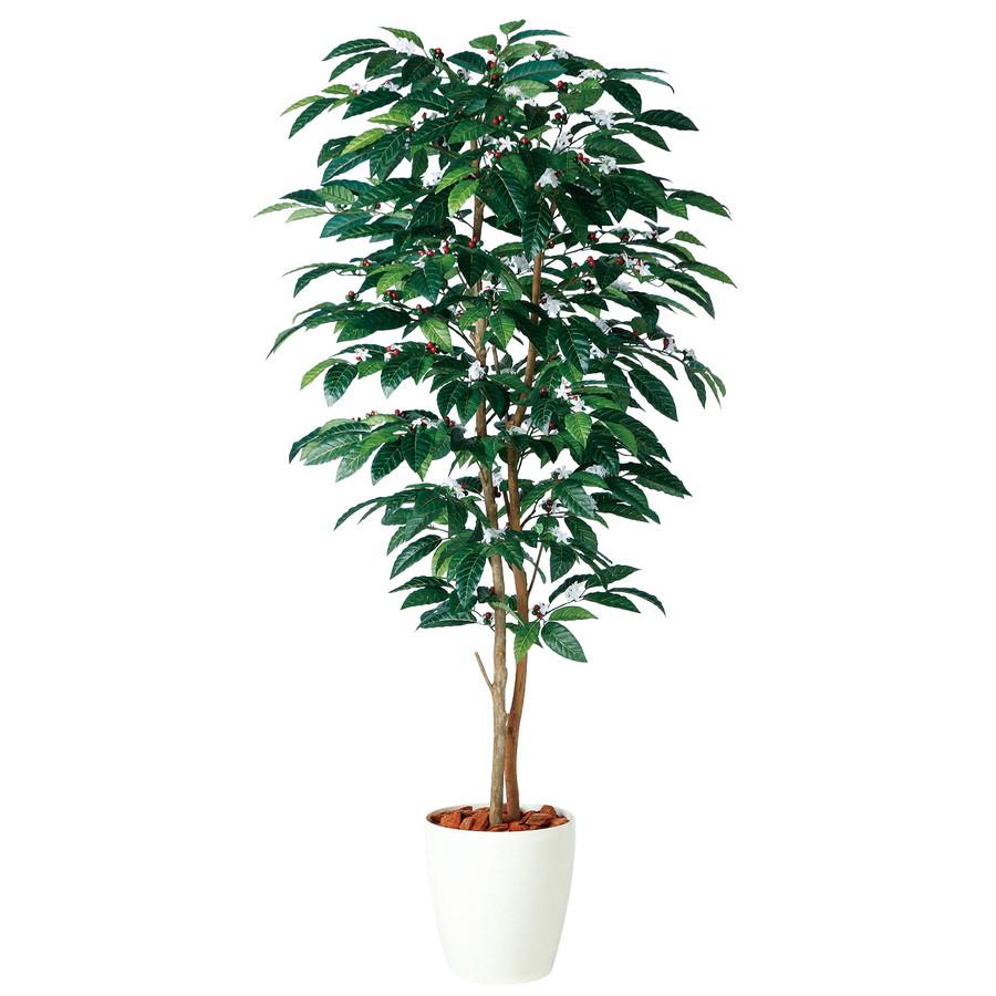 スーパーSALEセール対象 人工観葉植物 コーヒー デュアル 200 (器:RP-300) 98987|フェイクグリーン イミテーション インテリア オフィス 店舗 造花 おしゃれ 観葉植物 大型 観葉植物 おしゃれ 観葉植物 インテリア 《2018ds》