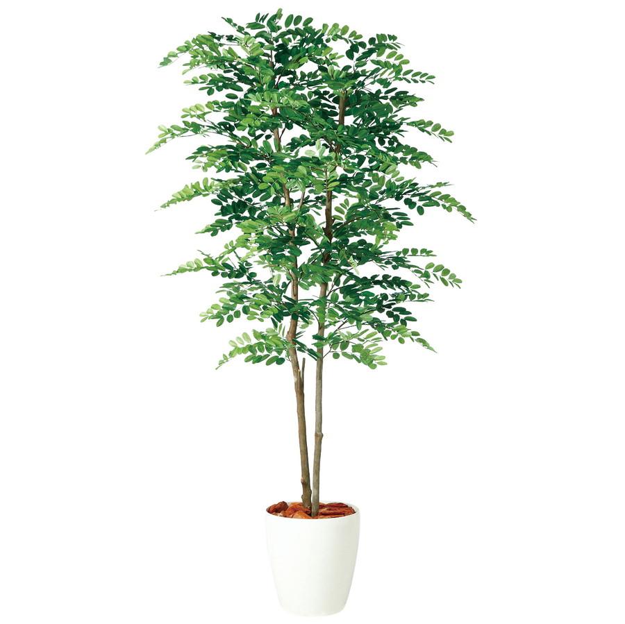 スーパーSALE10%OFF対象 人工観葉植物 アカシア デュアル 150 (器:RP-265) 98979|フェイクグリーン イミテーション インテリア オフィス 店舗 造花 おしゃれ 観葉植物 大型 観葉植物 おしゃれ 観葉植物 インテリア 《2018ds》