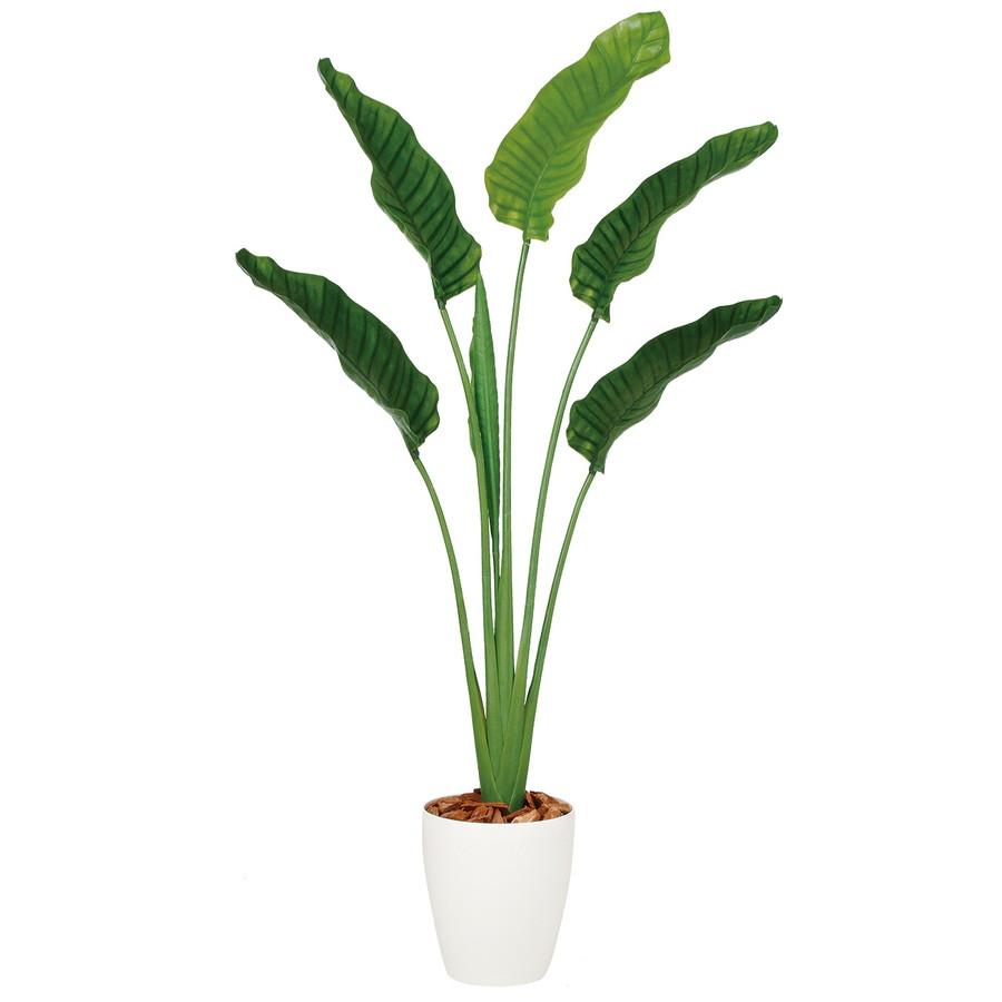 スーパーSALEセール対象 人工観葉植物 ストレリチア・オーガスタ 160 (器:RP-265) 99166 |フェイクグリーン イミテーション インテリア オフィス 店舗 造花 観葉植物 大型 観葉植物 おしゃれ 観葉植物 インテリア 《2018ds》