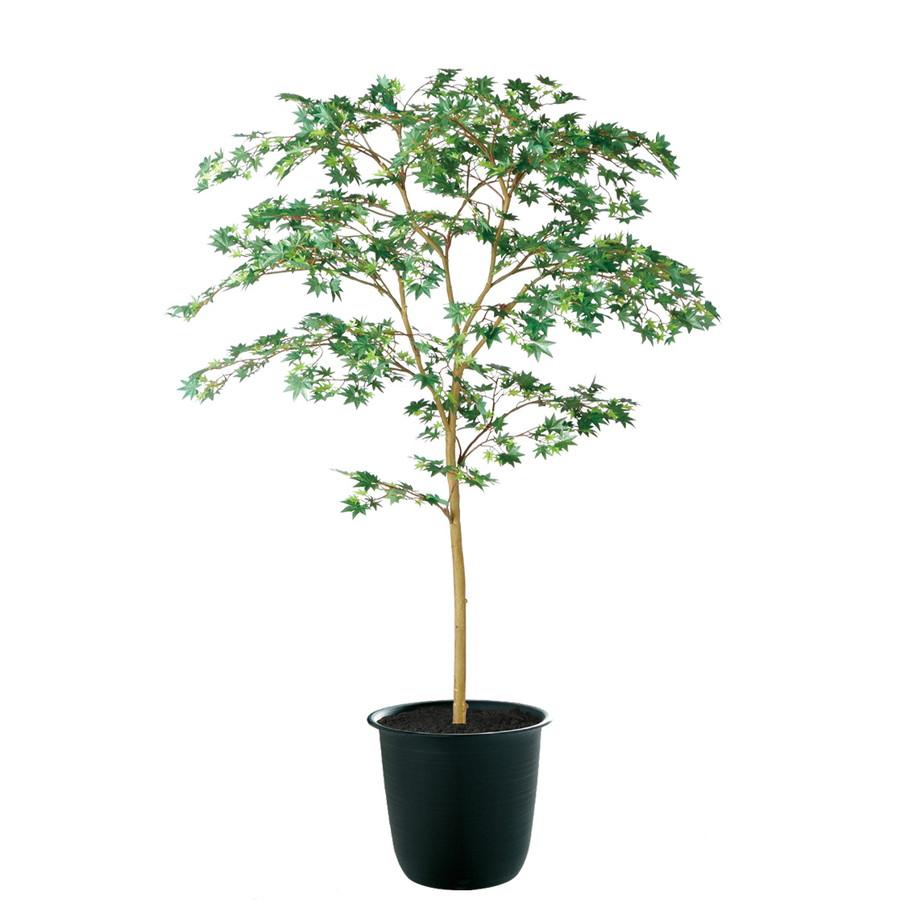 スーパーSALE10%OFF対象 人工観葉植物 ヤマモミジ 150 GREEN FST (器:ツリー7(BK)) 91760|フェイクグリーン イミテーション インテリア 禅モダン 和風 造花 観葉植物 大型 観葉植物 おしゃれ 観葉植物 インテリア 《2018ds》
