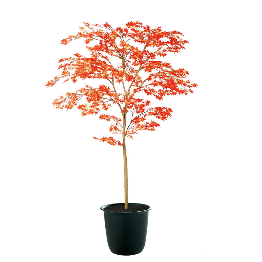 スーパーSALEセール対象 人工観葉植物 ヤマモミジ 150 RED FST (器:ツリー7(BK)) 91769|フェイクグリーン イミテーション インテリア 禅モダン 和風 造花 観葉植物 大型 観葉植物 おしゃれ 観葉植物 インテリア 《2018ds》