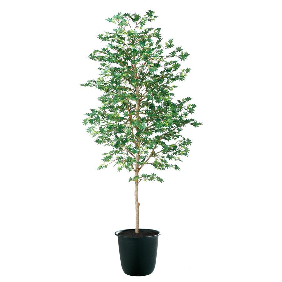人工観葉植物 ヤマモミジ 緑 180 (器:ツリー7(BK)) 91766|フェイクグリーン イミテーション インテリア 和風 造花 観葉植物 大型 観葉植物 おしゃれ 観葉植物 インテリア 《2018ds》