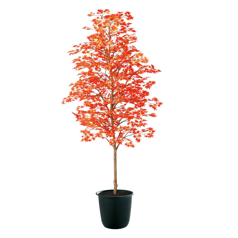 スーパーSALEセール対象 人工観葉植物 ヤマモミジ 紅 200 (器:ツリー8(BK)) 91774|フェイクグリーン イミテーション インテリア 和風 造花 観葉植物 大型 観葉植物 おしゃれ 観葉植物 インテリア 《2018ds》