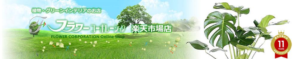 フラワーコーポレーション:観葉植物、花ギフト、園芸用品の販売・通販