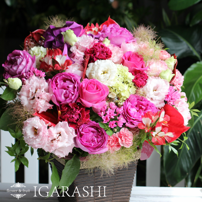 Flower fruit igarashi rakuten global market birthday of flower birthday of flower opening flower arrangement gift flowers birthday arrangements on the same day shipping congratulations and condolences retirement negle Gallery