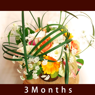 ☆送料無料☆【季節のアレンジメント定期便】3ヶ月定期配送/アレンジ定期装花/新生活応援