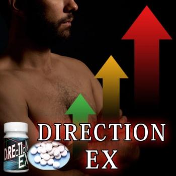 送料無料★2個セット ダイレクションイーエックス Direction EX/サプリメント 男性 健康 メンズサポート
