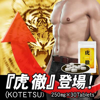 【送料無料★P10倍☆3個セット】KOTETSU 虎徹/サプリメント 男性 健康 メンズサポート