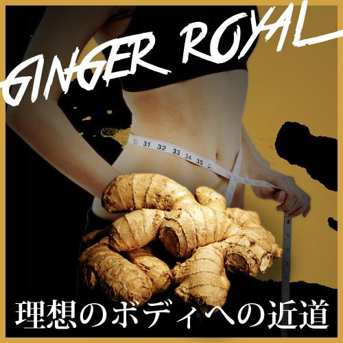 送料無料☆3個セット GINGER ROYAL ジンジャーロイヤル/サプリメント ダイエット 美容 健康 スリムサポート