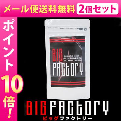 メール便送料無料★2個セット BIG FACTORY ビッグファクトリー/サプリメント 男性 健康 メンズサポート