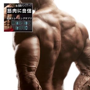 送料無料★2個セット Muscle Body 3rd.PRO マッスル ボディ サード.プロ/サプリメント 男性 健康 メンズサポート