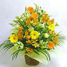 経典ブランド 華やかな季節のアレンジ 暖色系 フラワーアレンジメント Www Vicksburgnews Com