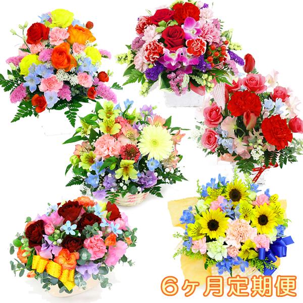 季節のアレンジ・エクセラ-6ヶ月定期便-