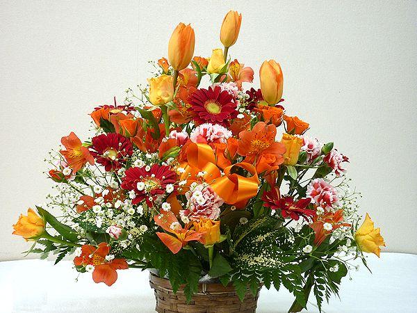 当店自慢のアレンジメント ボリューム満天 たくさんのお花がふんだんに使われています 季節のお花を常に仕入れてくるので お花をお任せしていただいている分 たくさん入れています 生花 スタッフおまかせ ゴージャスアレンジメントH40オレンジ 花 フラワーギフト 本日限定 退職祝い アレンジメント NO.3 誕生日 お祝い 送迎 結婚祝い 記念日 歓迎 初売り 還暦 母の日