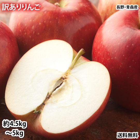 りんご 訳あり 約5kg(4.5~5kg) リンゴ 送料無料 長野・青森県産 サンふじ つがる ジョナゴールド ふじ 林檎