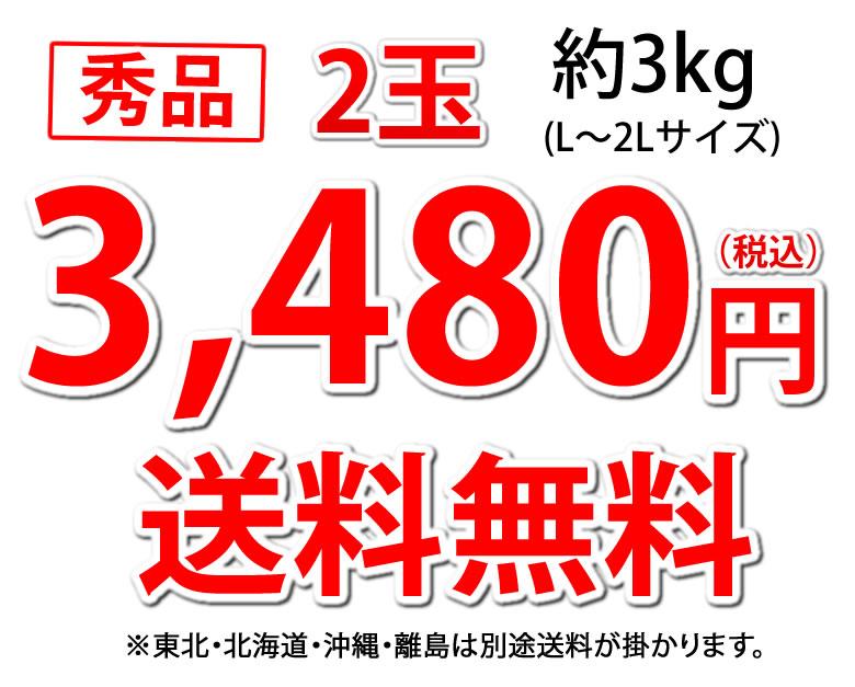 すいか 小玉すいか ひとりじめ  秀品2玉 約3kg 熊本県産 西瓜 スイカ