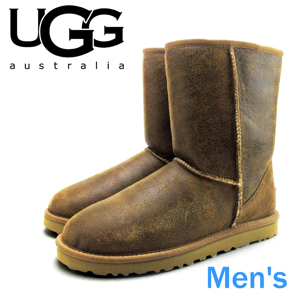 82ecd605203 In the promise of the UGG men's classic short bomber UGG MENS CLASSIC SHORT  BOMBER BJCE 5984 arrival report view