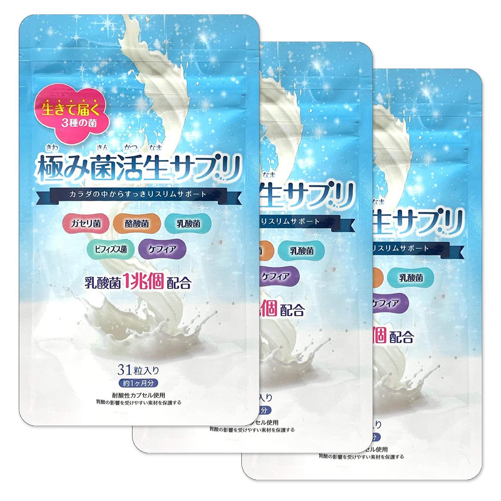 【公式】極み菌活生サプリ 31粒 やせ菌 サプリメント 乳酸菌 酪酸菌 ビフィズス菌 3袋(約3ヶ月分)