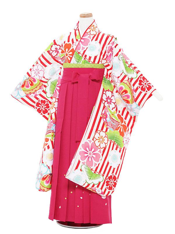 【レンタル】12歳前後 女児袴レンタル 赤×ピンク/桜・毬セット 145-150cm 12歳 卒業式 小学生 卒業袴 6年生 貸衣装 子供着物