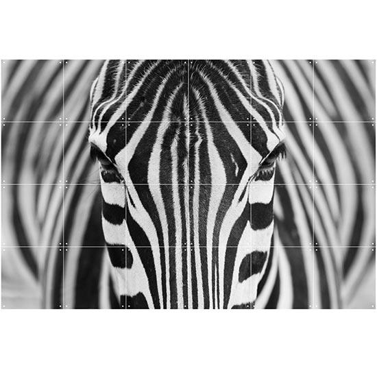 Zebra / IXXI ウォールピクチャーsize small 120x80cm 壁を傷つけない 簡単取付 賃貸物件の模様替えにも ヨーロッパで大人気な 名画が楽しめます。