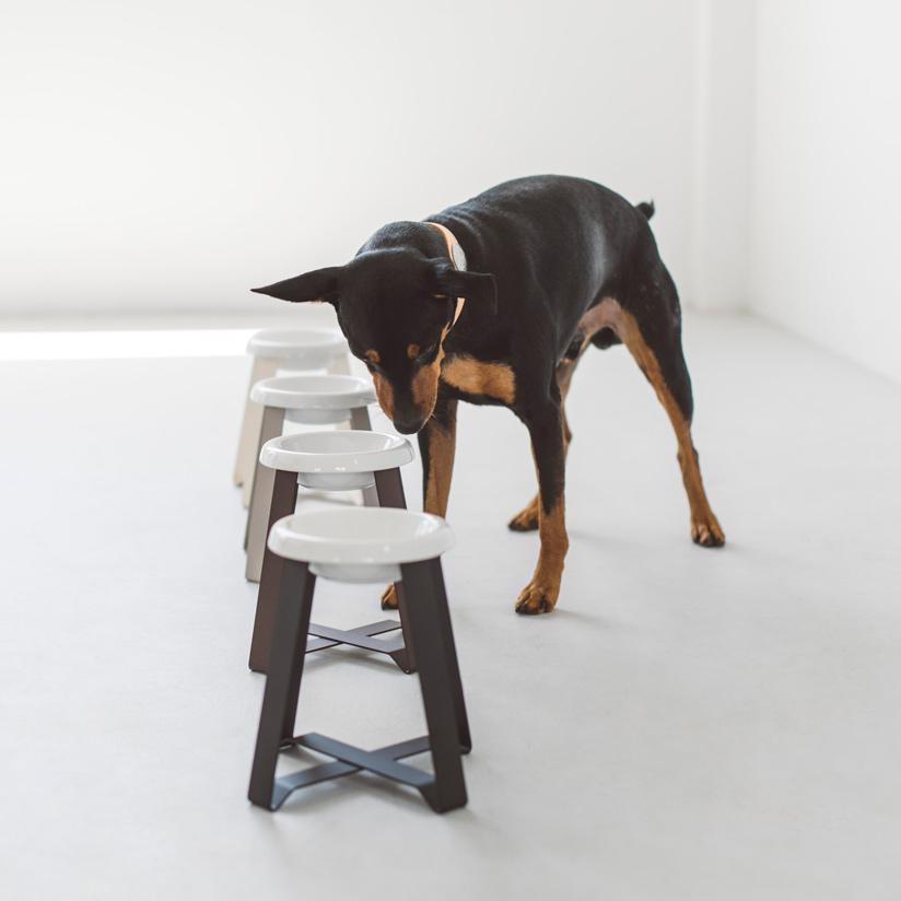 pecolo Food Stand S(hightall) 陶器浅型 フードボウルスタンド 犬 フードボウル