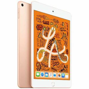 【新品 送料無料(沖縄・離島除く) 代引不可・日時指定不可】APPLE iPad mini wi-fi 64GB 2019 ゴールド