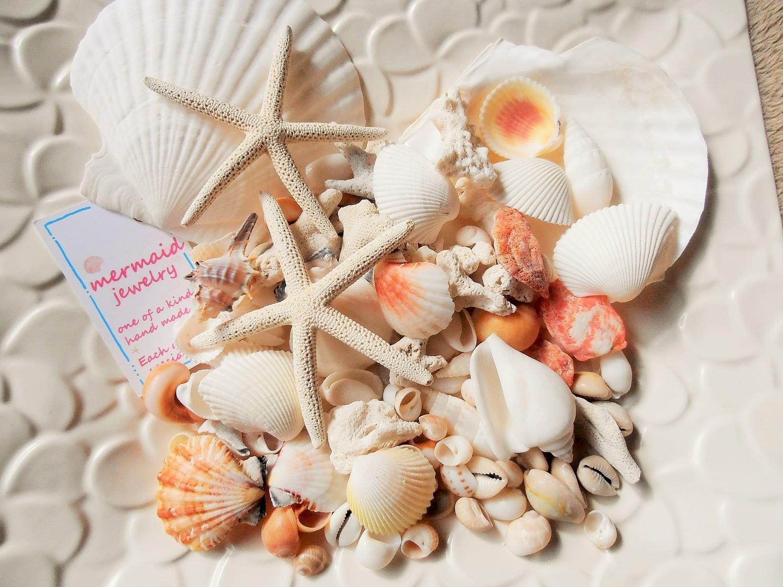 ハワイアンインテリア 出色 ブライダル ディスプレイ 手作り材料に きれいな貝殻のセットです 天然素材 A品 ハワイインテリア ヒトデ ホタテ サンゴ 色々な貝殻セット ランキングTOP5 350gパック 工作材料