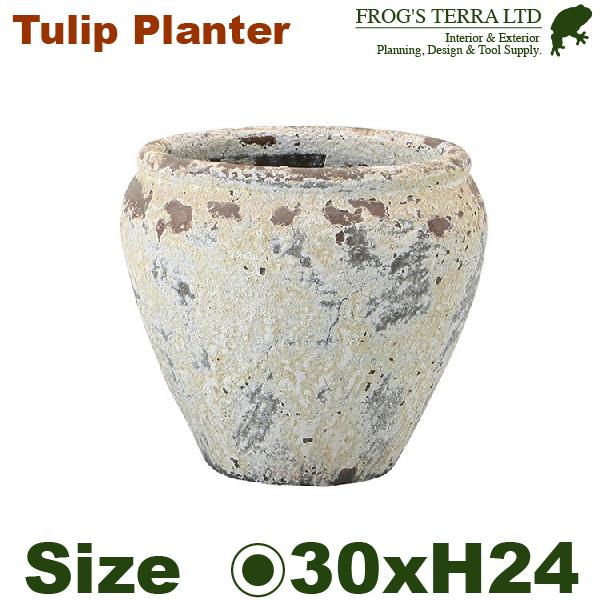チューリッププランターS・FS6854AD2S・Atlantis丸壺型(直径30cm×H24cm)(底穴有)(陶器製)(観葉鉢)