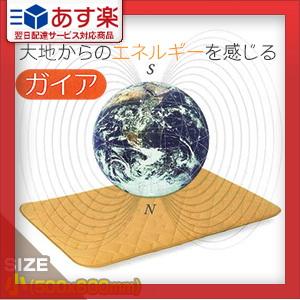 【あす楽対応】【家庭用永久磁石磁気治療器】磁気マット ガイア(小/500x600mm) - 最大磁束密度200mTの磁力がマット全面に配列。現代人の磁気不足を補います!【smtb-s】