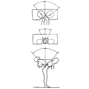 アースロダイヤル角度計(SN-434) 寸法:450×300mm 水準器付【smtb-s】