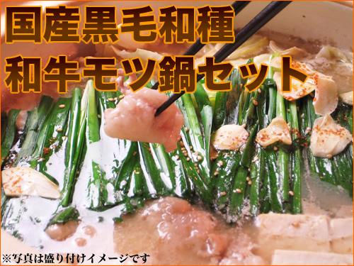 【年内発送は12/24まで】【ギフト対応】北海道白老産もつ鍋セット【楽ギフ_のし】