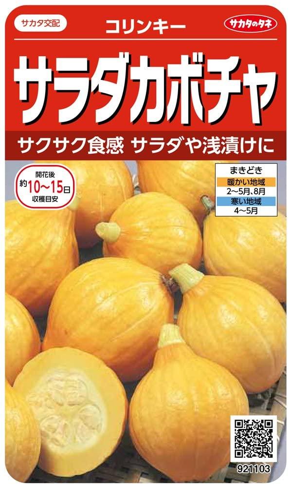 サカタのタネ 輸入 実咲野菜1103 サラダカボチャ 訳あり品送料無料 コリンキー 00921103
