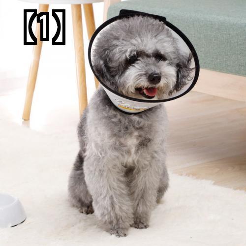 予約販売5~8営業日での発送 エリザベスカラー 猫 正規逆輸入品 ソフト かわいい キャンディーカラー リング 手術 ペット 専門店 怪我 犬 首 柔らかい プラスチック