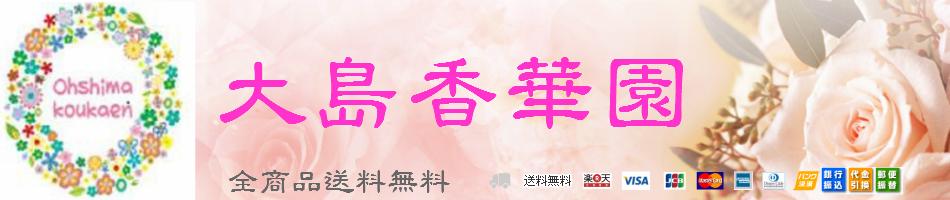 大島香華園 楽天市場店:御祝用 御供用 アレンジ 花束 胡蝶蘭鉢物等 取扱いしております。