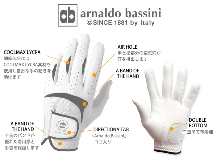 N ★ Pro Fit ★ Golf Gloves all sheep leather specifications right handed / left hand stock without A
