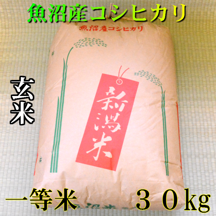 魚沼産コシヒカリ、一等米。冷めても美味しい。 【一等米】 令和元年産 新米 新潟 魚沼産 コシヒカリ 玄米 30kg(30キロ) 令和元年 魚沼産コシヒカリ 魚沼産こしひかり 魚沼コシヒカリ 美味しい お米 おいしいお米 美味しい米 おいしい米 ご当地 グルメ 送料無料