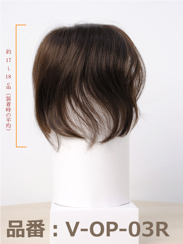 Partial wig human hair wigs and put Crown