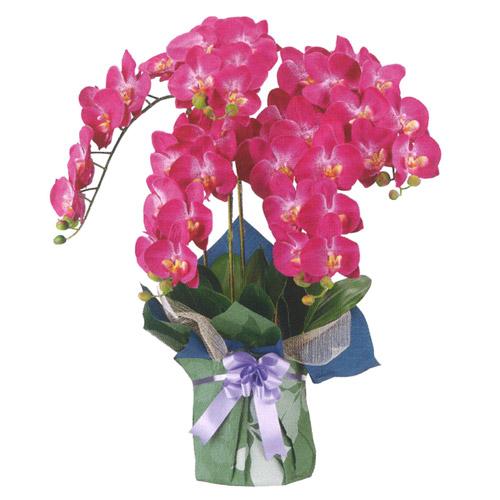 盆提灯 盆ちょうちん 花飾り 造花 初盆 新盆 『シルク 胡蝶蘭 ≪赤紫≫ 1個 高さ82cm』