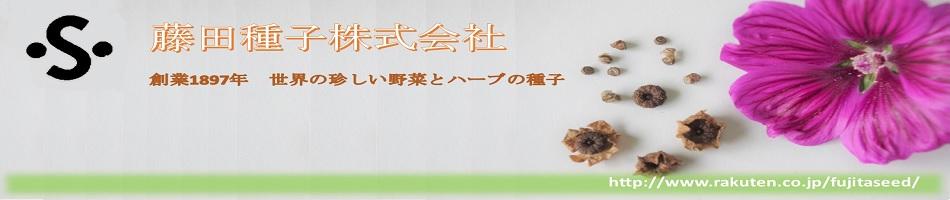 藤田種子株式会社:世界の珍しい野菜とハーブの種子を取扱いしています藤田種子株式会社です