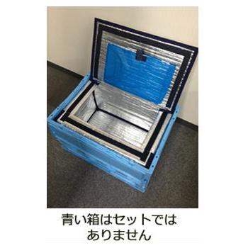 50リットル用保冷ボックス 10枚セット