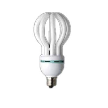 蛍光灯 40W ロータス40(12個)・電球型