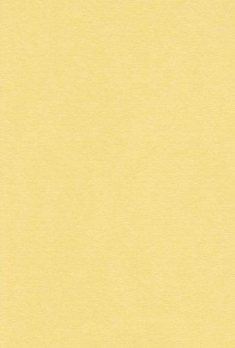 (まとめ買い)エスケント ニューカラー色画用紙4切100枚 レモン NC319 4ツキリ 100マイ 00808367 〔×3〕【北海道・沖縄・離島配送不可】