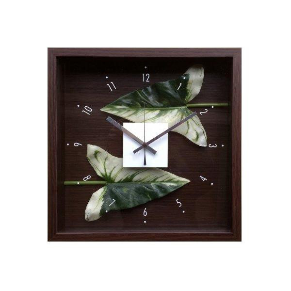 デザインクロック Anthurium leaf CDC-51813 【代引不可】【北海道・沖縄・離島配送不可】