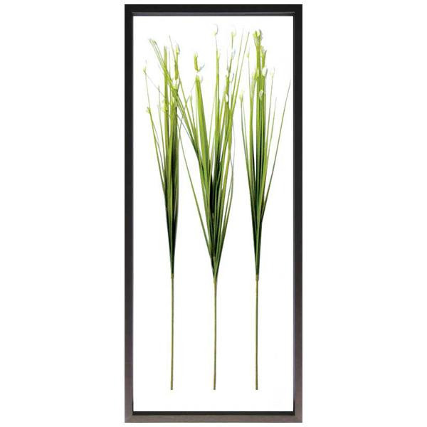 F-style Frame フレーム Flower Grass IFF-50721 【代引不可】【北海道・沖縄・離島配送不可】