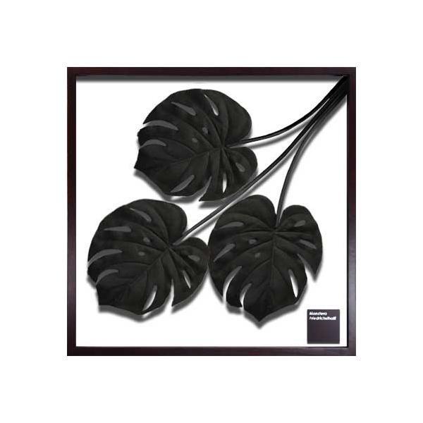 F-style Frame フレーム Monstera deliciosa Black IFF-51079 【代引不可】【北海道・沖縄・離島配送不可】