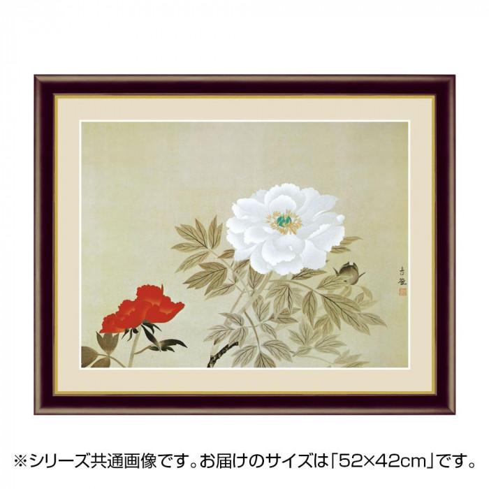 アート額絵 小林古径 「牡丹」 G4-BN100 52×42cm【代引不可】【北海道・沖縄・離島配送不可】