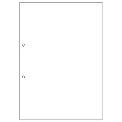 (まとめ買い)ヒサゴ マルチプリンタ帳票(エコノミープライス)A4 白紙 2穴 2500枚 BPE2001 〔×2〕【北海道・沖縄・離島配送不可】